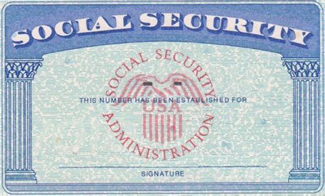ss card template 10 ssn template psd images social security card blank