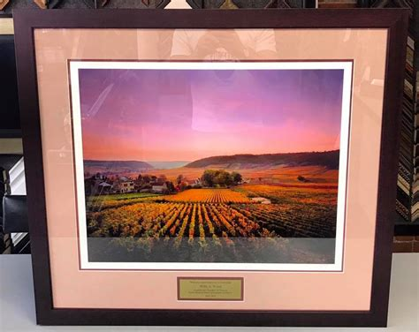 fastframe of lodo expert picture framing