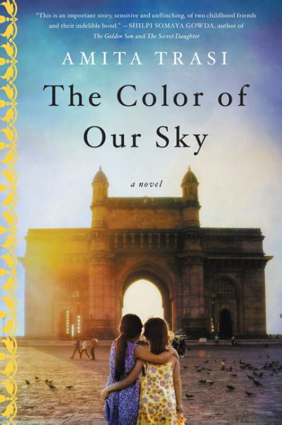 a dress the color of the sky books the color of our sky by amita trasi book review