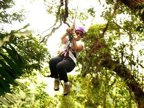 tarzan the monkey man swinging on a rubber band lyrics tarzan swing picture of la fortuna de san carlos arenal