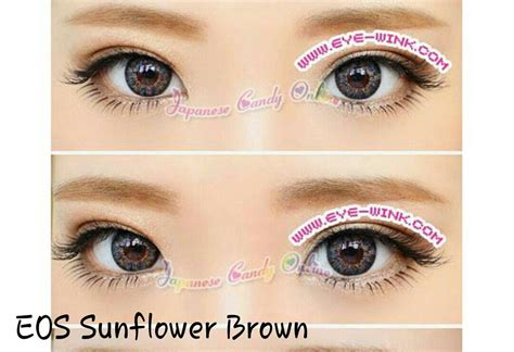 Softlens Eos Sunflower Sun Flower Normal Dan Minus jual softlens eos sunflower free ongkir softlensmurahku