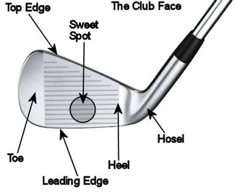 anatomy of a golf swing anatomy of a golf club work stuff pinterest