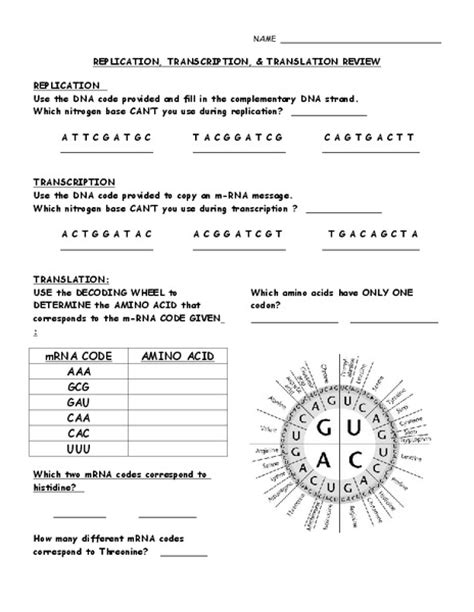 dna replication transcription and translation worksheet