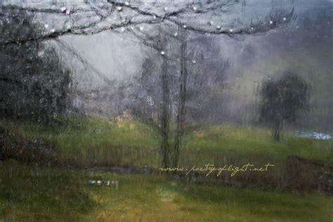 Nasse Fenster Morgens by Hintergrundbilder Wald Fenster Natur Betrachtung