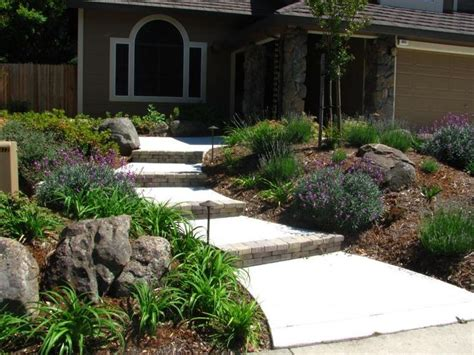 california backyard sacramento here is a great front yard drought resistant landscape