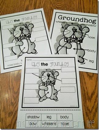 groundhog day parents guide 17 best images about ground hogs snacks projects on