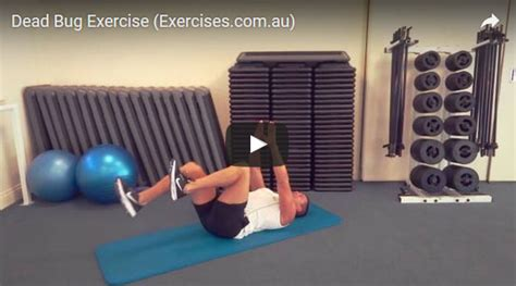 dead bug exercise quick  min step  step demo video