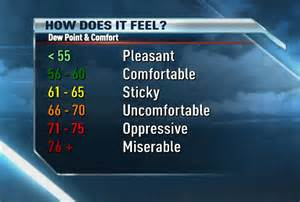 news 8 weather dew point the best indicator of comfort