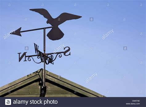 Weathervanes For Sheds by Weather Vanes Cat Weathervane With Hummingbird 30 In