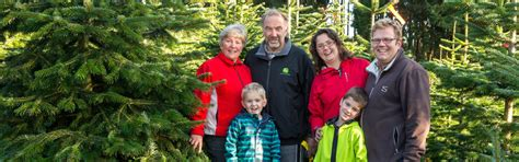 weihnachtsbaum selber schlagen nähe bonn weihnachtsbaumhof tacke weihnachtsbaumverkauf schnittgr 252 n ballenb 228 ume dekob 228 ume