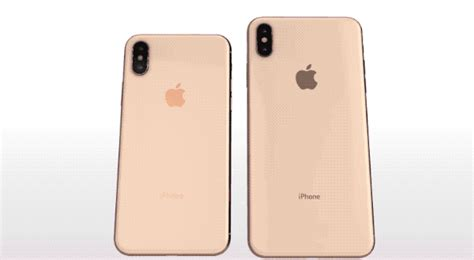 give   iphone xs  xs max  virtual whirl