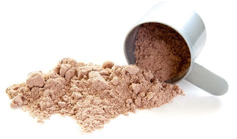 best protein to build and lose high protein diet to lose weight and build