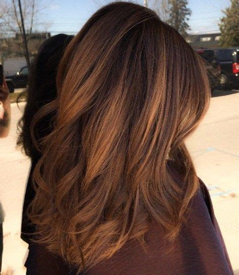 Onyx Hair Coloring Shoo Brown brown hair with golden brown balayage hair