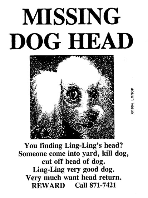 missing dog head the official missing dog head web site