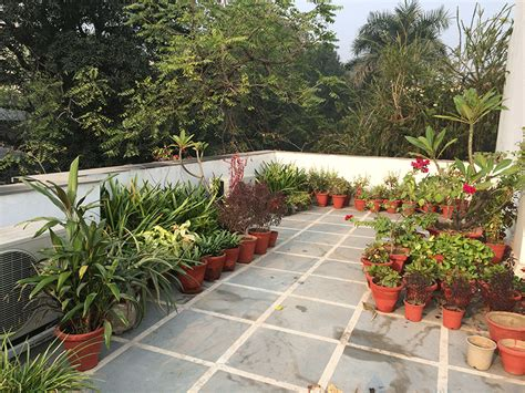 garten terrasse mit dach dhara the earth an indian gardening my roof top