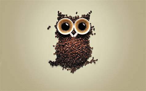 wallpaper owl coffee coffee owl wallpapers coffee owl myspace backgrounds