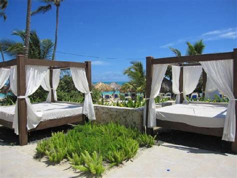 bali bed bali beds picture of majestic elegance punta cana