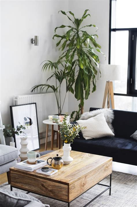 living room with plants 17 best ideas about plant rooms on plants