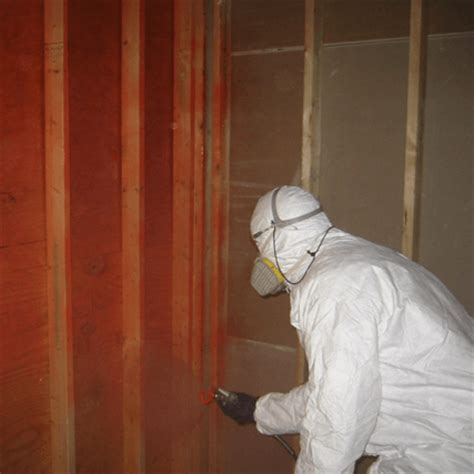 disinfectants cleaners mold remediation products