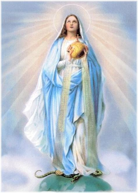 imagenes de todas las virgen maria nel giardino degli angeli la medaglia miracolosa