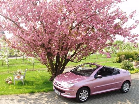 peugeot pink 208 best peugeot 206 cc images on pinterest peugeot