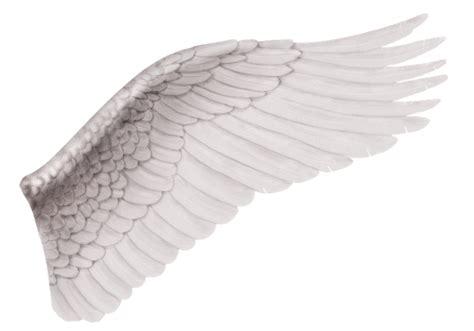 imagenes de alas blancas nacimieno wicca new age