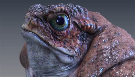 best texture painting software autodesk introduces mudbox 2009 digital sculpting and