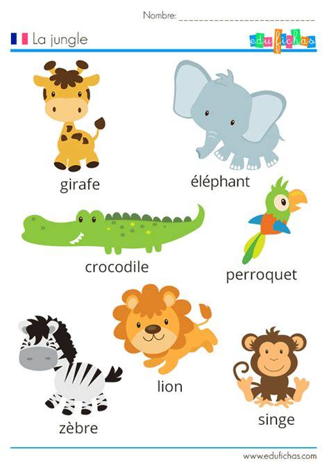 frances para ninos contar 1973743817 vocabulario de la jungla en franc 233 s con ejercicio fichas de actividades para ni 241 os