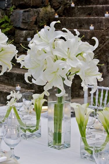 David Tutera Wedding Centerpieces Terynes S Are You Frustrated Because You Can 39t