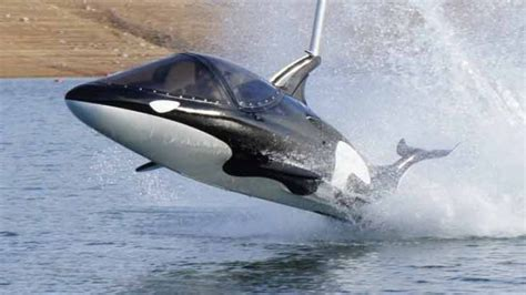 the shark names the submarine whale watching boat the submarine that can leap like a whale