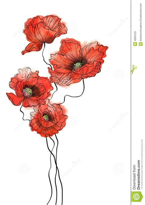 four vertical watercolor poppies on white background stock