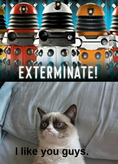 Doctor Who Cat Meme - doctor who a collection of ideas to try about