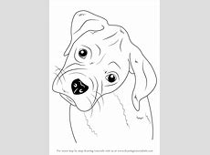 Learn How to Draw Boxer Puppy Face (Farm Animals) Step by ... Easy Dog Face Drawing