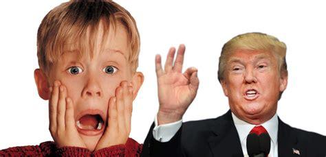 donald president tv reaction gifs
