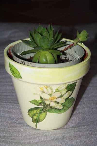 vaso di coccio vasi di coccio decorati per la casa e per te decorare