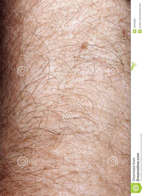 human skin royalty free stock images image 17108889 up of human skin royalty free stock photos image 12910838