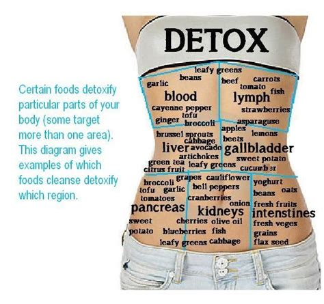New Start Detox Was Founded by 527 Best Images About Health And Fitness Factoids On