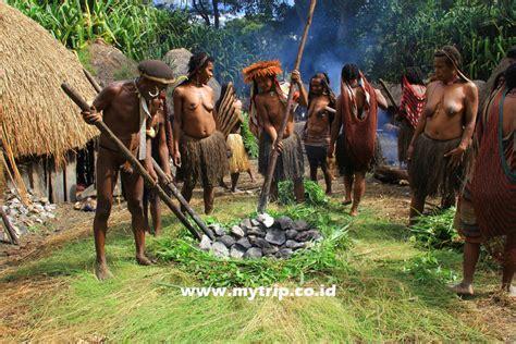 Paling Laris Bakar Batu jangan lewatkan upacara bakar batu kalau ke wamena