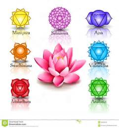 Chakra Lotus Flower Drawing How To Draw Lotus In Sacred Geometry Graphic