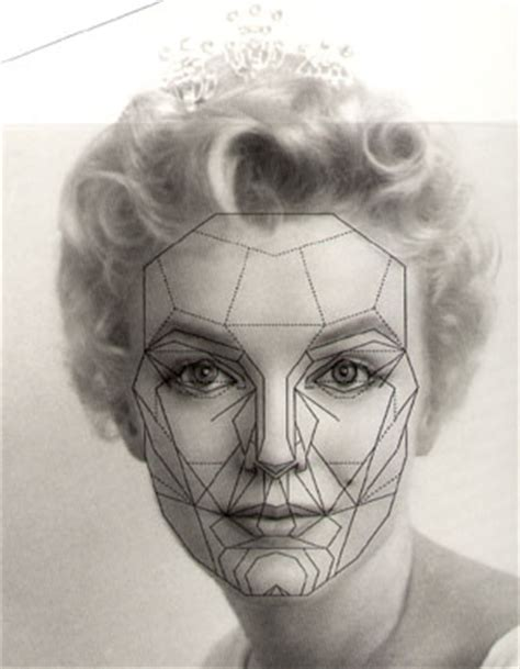 Mba California Mask by The Math Of Golden Ratio Brains