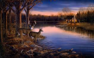 deer wall mural deer lake evening wall mural 1920x1200 538 hd wallpaper