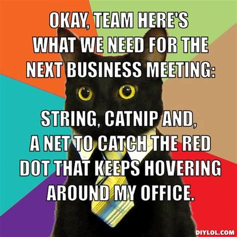 Business Meeting Meme - office cat meme google search work humor pinterest