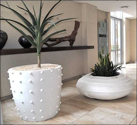 plant pots for indoor plants images