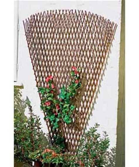 fan shaped garden trellis heavy duty expanding fan trellis 1 8 x 0 9m review