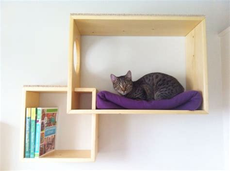 diy funky cat shelves cat trees cat walks cat stairs