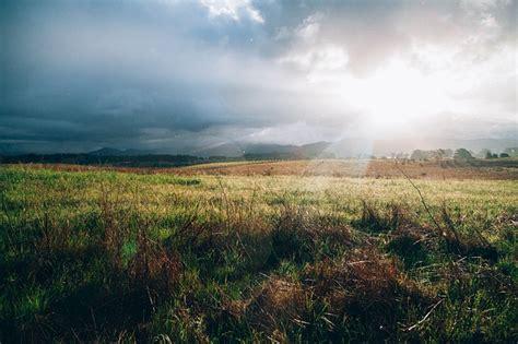 sunlight ray grass field outdoor  photo  pixabay