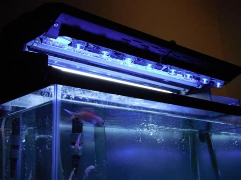 budget diy led stunner strips moonlight reef2reef