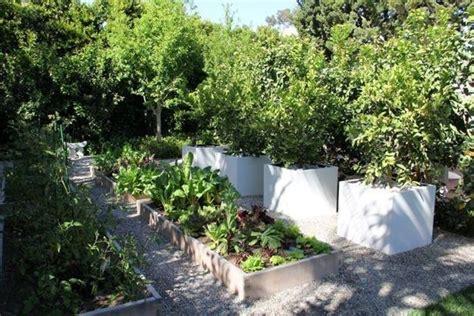 vasi per piante grandi dimensioni vasi grandi vasi