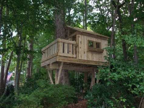 treehouse in backyard tree fort outdoors pinterest