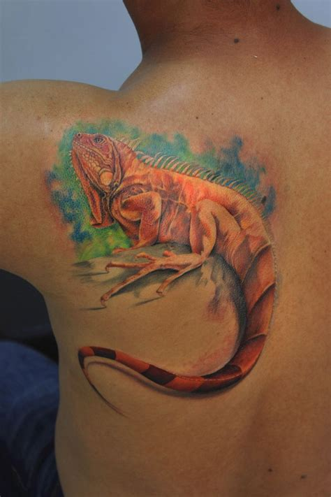 iguana tattoo best 25 iguana ideas on gecko